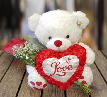 Teddy Bear Wrap