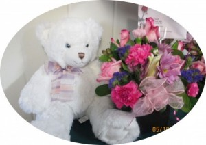 Teddy Bears Stuffed Animals in Albany, GA | ALBANY FLORAL & GIFT SHOP