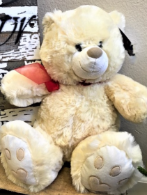 Teddy Stuffed Animal
