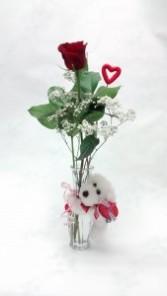 teddy / dog romance vase  limited quantities