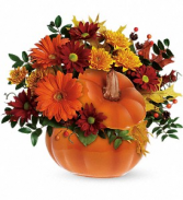 Teleflora Country Pumpkin Fresh Flower in Keepsake