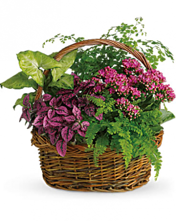 Teleflora Secret Garden Basket