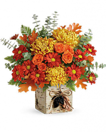 Teleflora Wild autumn bouquet Faux birch cube