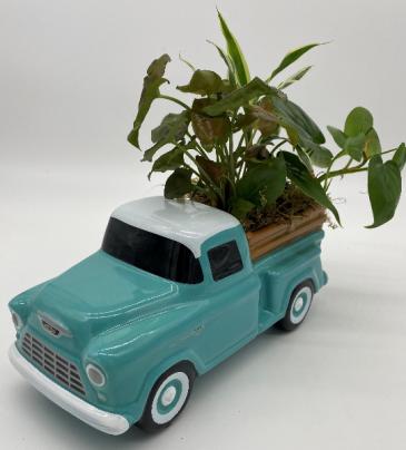 Teleflora's 55 Chevy Pickup Ceramic replica