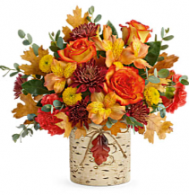 Teleflora's Autumn Colors Birch Cylinder