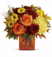 Teleflora's Autumn Expression Fall