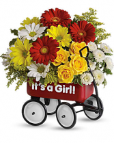 Teleflora's Baby Girl  Wow Wagon  Flower arrangement