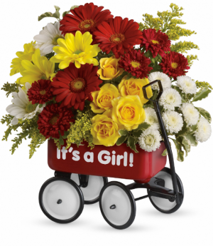 Teleflora's Baby's Wow Wagon (Girl) Baby Girl  in Mount Pearl, NL | MOUNT PEARL FLORIST