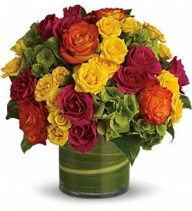 Teleflora's Blossoms in Vogue Vased Arrangement