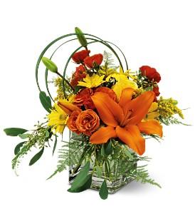 Teleflora's Bright and Sunny Fresh Flowers