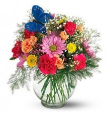 Teleflora's Butterfly & Blossoms Vase  Fresh Arrangement