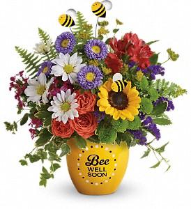 Teleflora's Buzzing Be Well Pot Fresh Flower's in Keepsake