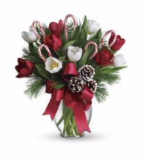 Teleflora's By Golly It's Jolly Arrangement