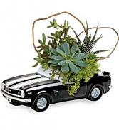 Teleflora's Chevy Camaro Garden