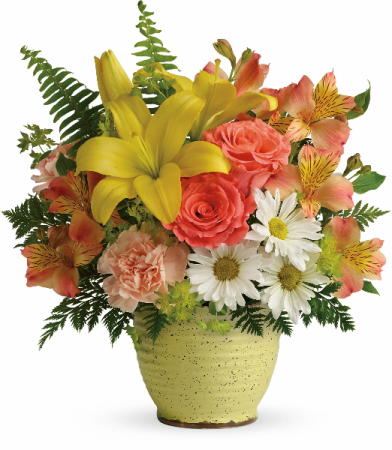 Teleflora's Clear Morning Bouquet T18E305A     Spring
