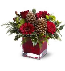 Teleflora's Cosy Christmas Christmas arrangement