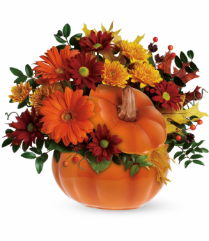 Teleflora's Country Pumpkin Fall in Tyngsboro, MA | BLOSSOMS