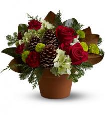 Teleflora's Countryside Christmas Christmas arrangement