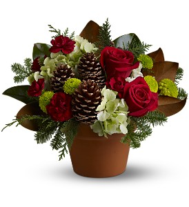 Teleflora's Countryside Christmas Christmas arrangement