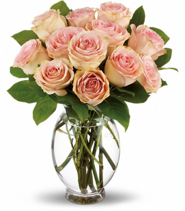 Teleflora's Delicate Dozen Roses