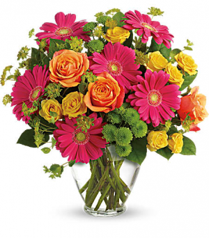 Teleflora's End Of The Rainbow  in Livermore, CA | KNODT'S FLOWERS