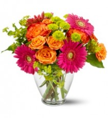 Teleflora's End of The Rainbow Vased Arrangement