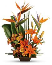 Teleflora's Exotic Grace Bouquet Vase Arrangement