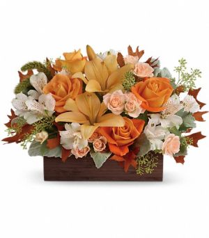 Teleflora's Fall Chic Bouquet  in Valley City, OH | HILL HAVEN FLORIST & GREENHOUSE