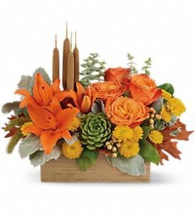 Teleflora's Fall Garden  Succulents and Mixed Flowers