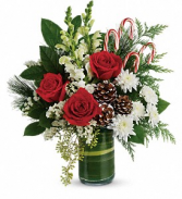Teleflora's Festive Pines Arrangement Fresh Flower Arrangement