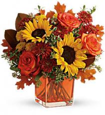 Teleflora's Hello Autumn Bouquet  Mixed Flowers