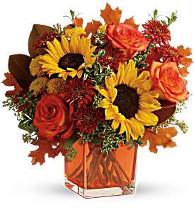 Teleflora's Hello Autumn Bouquet TFL11-2B Bouquet