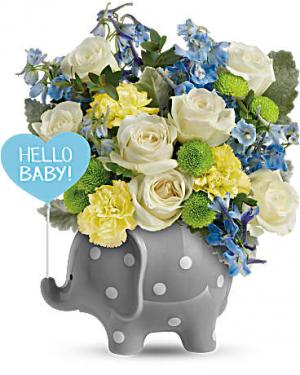 Teleflora's Hello Sweet Baby - Blue  in Edgewood, MD | ALWAYS GOLDIE'S FLORIST