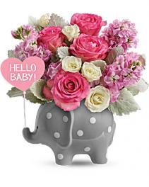 Teleflora's Hello Sweet Baby - Pink