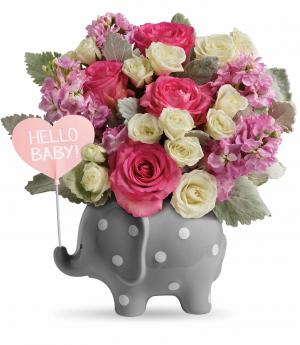 Teleflora's Hello Sweet Baby Girl TNB06-1B Bouquet in Moses Lake, WA | FLORAL OCCASIONS