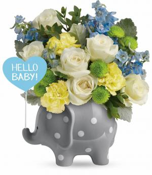 Teleflora's Hello Sweet Baby Boy TNB07-1B Bouquet in Moses Lake, WA | FLORAL OCCASIONS