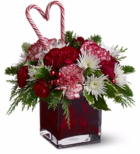 Teleflora Christmas Catalog 2021 Teleflora S Holiday Sweetheart Christmas In Valley City Oh Hill Haven Florist Greenhouse