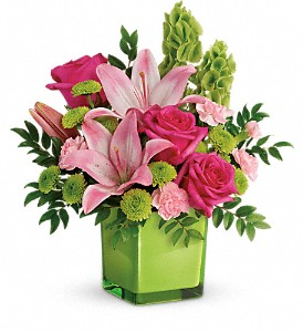 Teleflora's In Love With Lime Cube arrangement-fresh