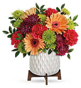 Teleflora's Mid Mod Brights  in Florenceville Bristol, NB   JT's Flowers