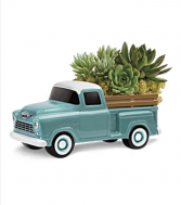 Teleflora's Perfect Chevy Pick Up Fresh Succulent Garden