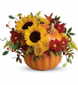 Teleflora's Pretty Pumpkin Bouquet Fresh Arrangement with a Teleflora Keepsake