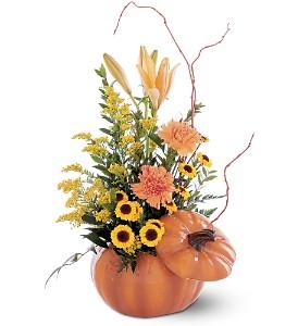 Teleflora's Pumpkin Arrangement Fresh Arrangement with a Teleflora Keepsake
