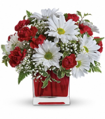 Red and White Delight Fresh Arrangement