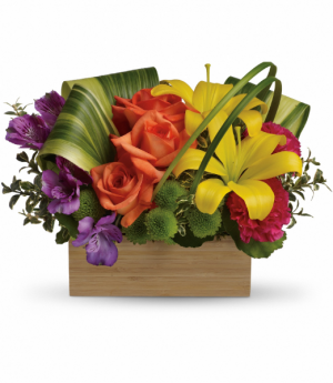 Teleflora's Shades of Brilliance Bouquet Teleflora in Mount Pearl, NL | MOUNT PEARL FLORIST