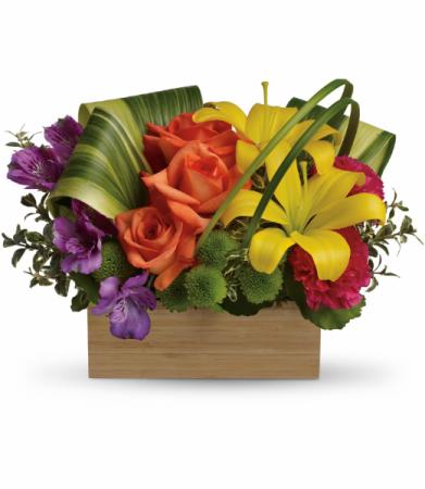 Teleflora's Shades of Brilliance Bouquet Teleflora