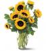 Teleflora's Shining Sunflowers