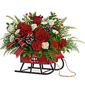 Teleflora's Sleigh Bells T20X300B Bouquet