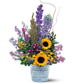 Teleflora's Summer Flower Pail  in Livermore, CA | KNODT'S FLOWERS