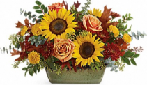Teleflora's Sunflower Farm Centerpiece Thanksgiving