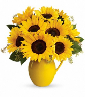 Teleflora's Sunny Day Pitcher of Sunflowers Fresh Floral
